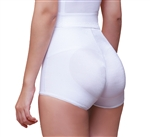 Highwaist Hip Hugger Panty Enhancer